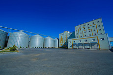 Absheron Grain