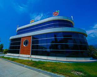 Габалинский <br>консервный завод